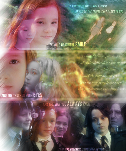 Sverus and Lily - severus-snape-and-lily-evans Fan Art