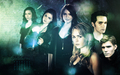 The Secret Circle - haleydewit wallpaper