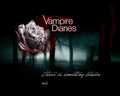 HaleyDewit achtergrond with a sign entitled The Vampire Diaries