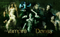 The Vampire Diaries - haleydewit wallpaper