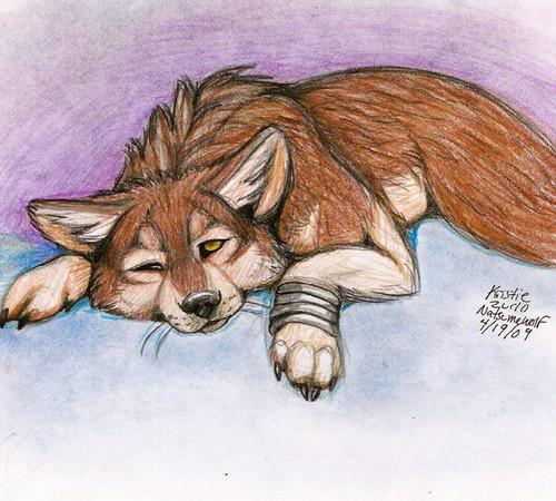 Toboe (Wolf's Rain)