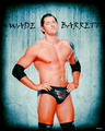 Wade Barrett  - wwe fan art