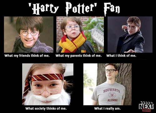 Harry Potter Vs. Twilight wallpaper entitled What society thinks of fans