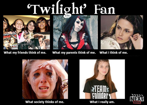 What society thinks of fan