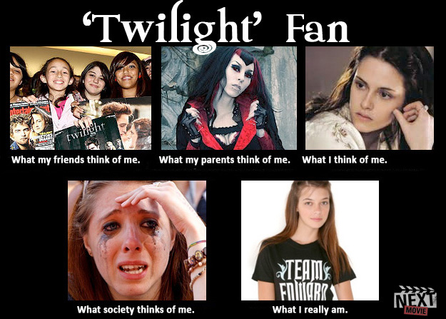 What society thinks of fans