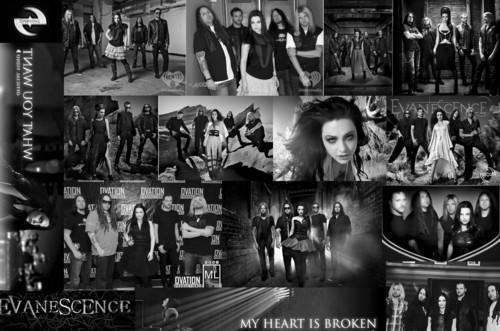 evanescence2011-2012