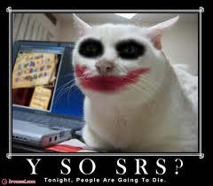 jokers cat