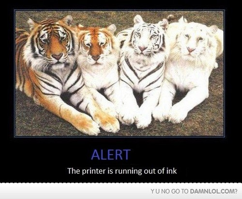 tigres are awsome