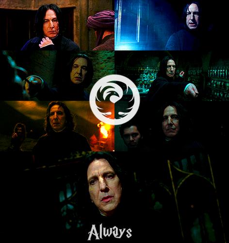 ☆ Always ☆