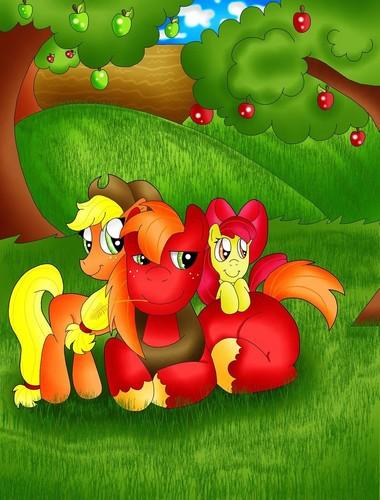 maçã, apple Siblings