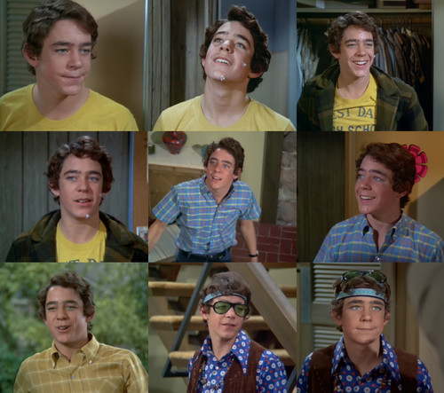 Barry Williams as Greg Brady