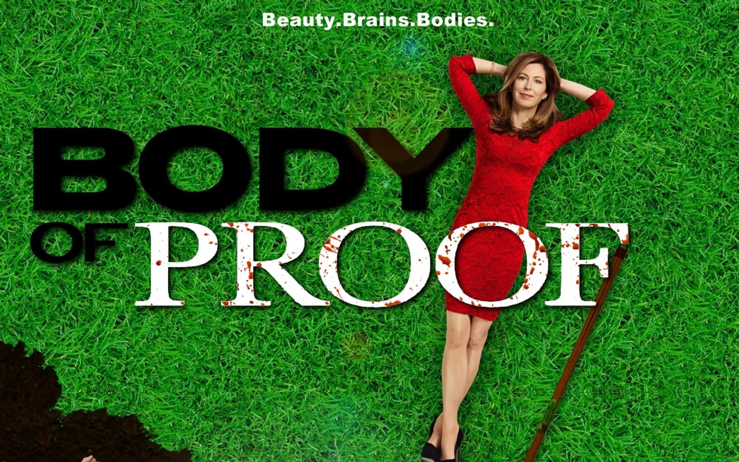 Body Of Proof images Body of Proof! HD wallpaper and background ...