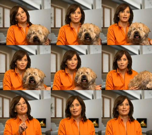 Brianne & Lulu from Bizfilings interview