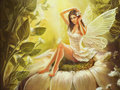 Fairy - daydreaming photo