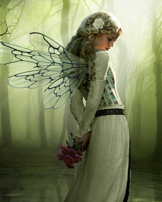 Fairy - Fairies Photo (29748309) - Fanpop