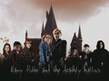Harry Potter  - draco-malfoy-and-hermione-granger photo