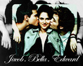 Jacob,Bella & Edward - twilighters wallpaper