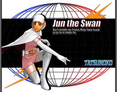 Jun the angsa, swan