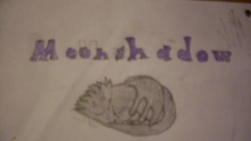 Moonshadow sleeping! X3