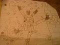 My matt the lynx drawling