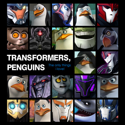 Penguins and Transformers!