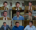 Robert Reed as Mike Brady - the-brady-bunch fan art