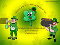 S.t Patricks Day - saint-patricks-day wallpaper