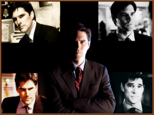 Esprits Criminels fond d'écran with a business suit, a suit, and a pianist titled SSA Aaron Hotchner