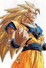 SSJ3 Goku!DBZ - bardock-and-king-vegeta Icon