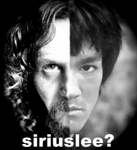 SiriusLee