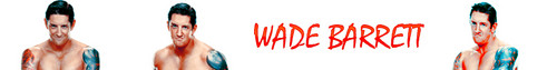 Wade Barrett Banner