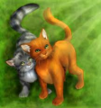 Warriors R Cute! - warrior-cats photo