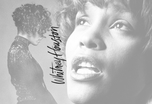 Whitney - whitney-houston Fan Art