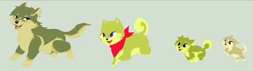 lobo link, Sheba tetra and pups!