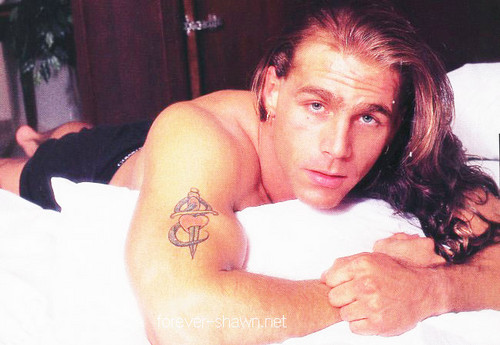 Shawn Michaels wallpaper containing skin titled shawn