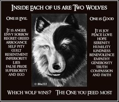 tai chi lobo