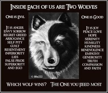 tai chi wolf