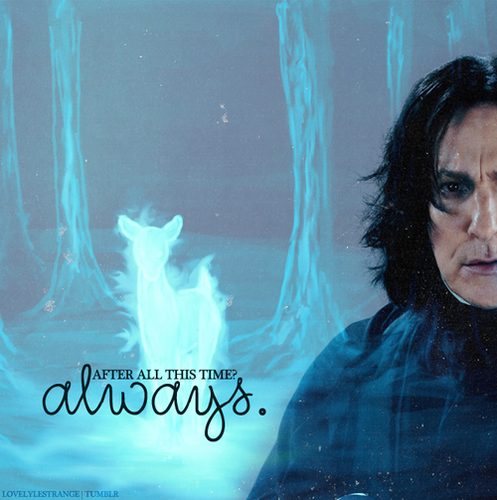 Severus Snape wallpaper called ☆ Always ☆