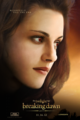 BD 2. - twilight-series photo