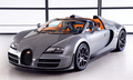 BUGATTI VEYRON 16.4 GRAND SPORT VITESSE - sports-cars photo