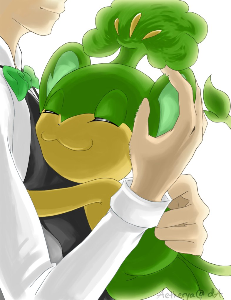 Cilan and Pansage :3