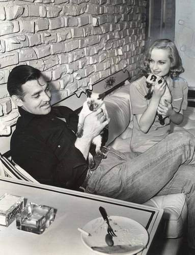 Classic Movies wallpaper possibly containing a street and a sign called Clark Gable & Carole Lombard