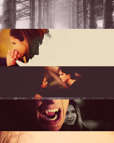 Damon & Elena kertas dinding possibly containing a sign called Delena