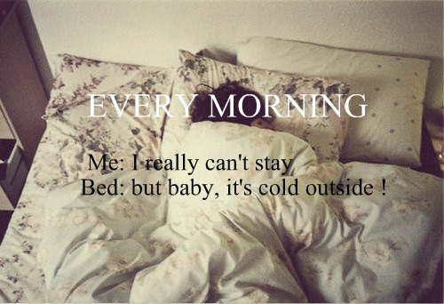 EVERY MORNING !