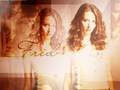 Fred Burkle - haleydewit wallpaper