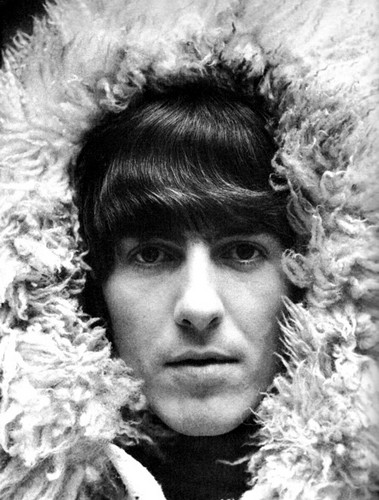George Harrison wallpaper possibly containing a pelliccia cappotto titled George Harrison