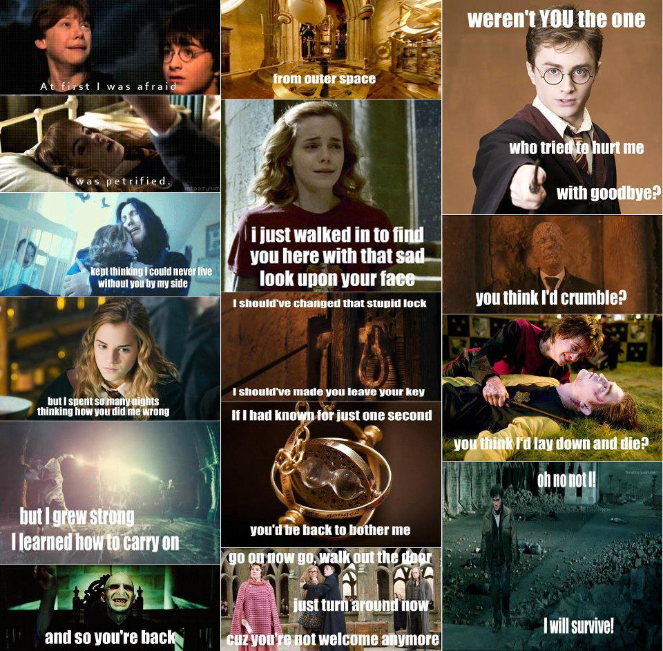 Funny Appropriate Harry Potter Memes : Harry potter menobsessed photo  fanpop