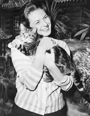 Ingrid Bergman with pet cat