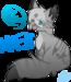 Jayfeather~ <3 - warrior-cats icon