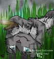 Jayfeather~ &lt;3 - warrior-cats photo